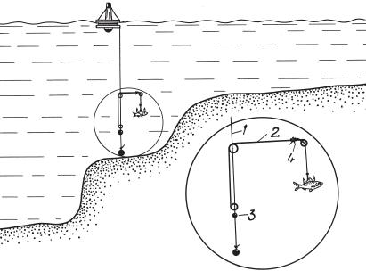 Ловля судак на кружок