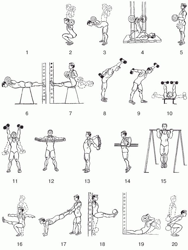 комплекс силовых тренировок для начинающих