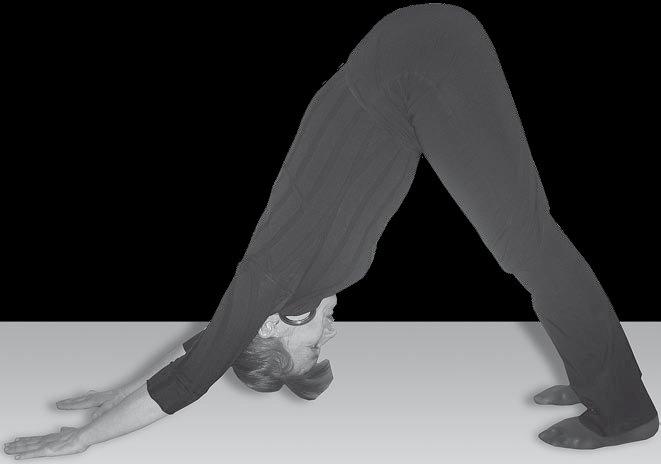 Гімнастика Кацудзо Ніші